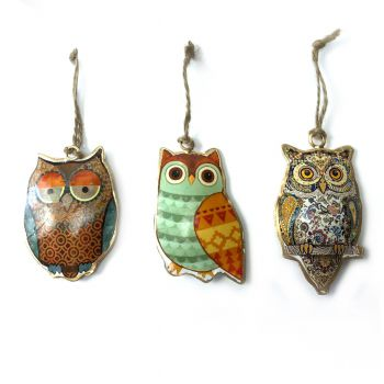 Owls Funny, set of 3