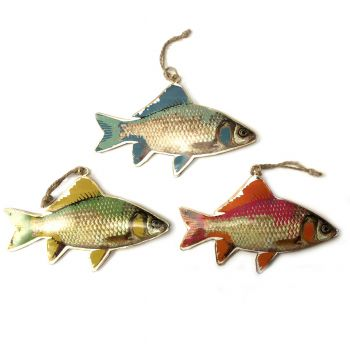 Fish Raw, set of 3
